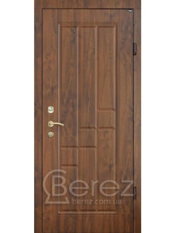 В23 Берез Strada - Входные двери, Входные двери в дом