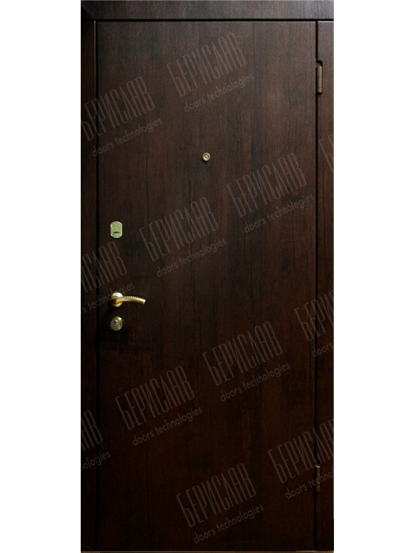 Берислав Гладь М-1-2 - Входные двери, Входные двери в дом