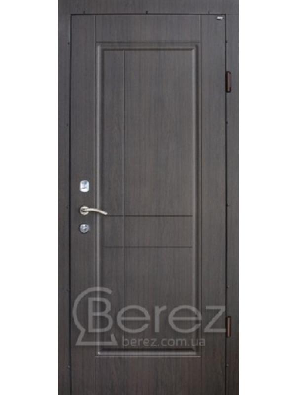Алегра Берез Strada - Входные двери, Входные двери в дом