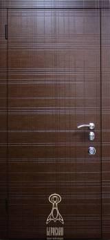 Берислав Графіті М4 - Вхідні двері, Двері внутрішні (в квартиру)